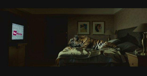 Borghi, Francesca Archibugi, el mundo del cine contra el cierre de una cosa de sentido común y