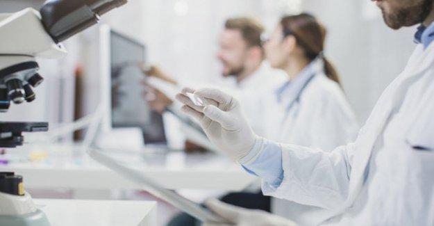 Células madre para regenerar el hígado
