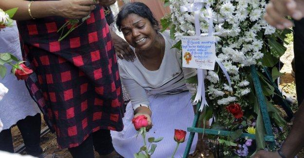 Daniel, Zayan, y la pareja en su luna de miel: las víctimas de los ataques terroristas en Sri Lanka