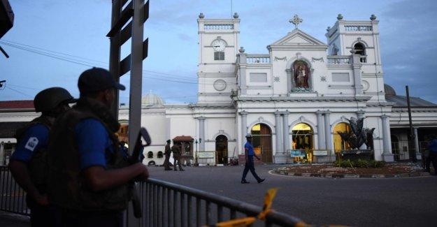 Llegó a Colombo, nos encontramos en el caos: el cuento de los dos italianos que viajan en Sri Lanka