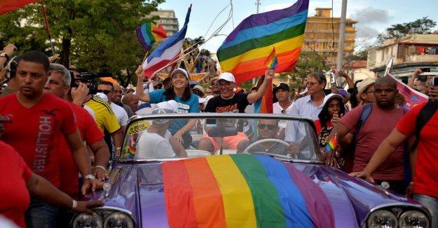 El día internacional contra la Homofobia, Mattarella: Oportunidad para reafirmar el principio de igualdad