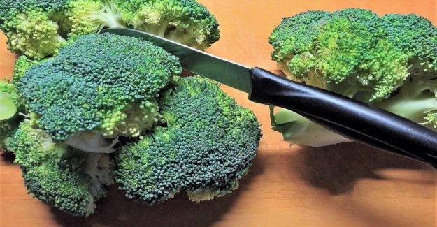 En el brócoli, la clave para noquear a los tumores