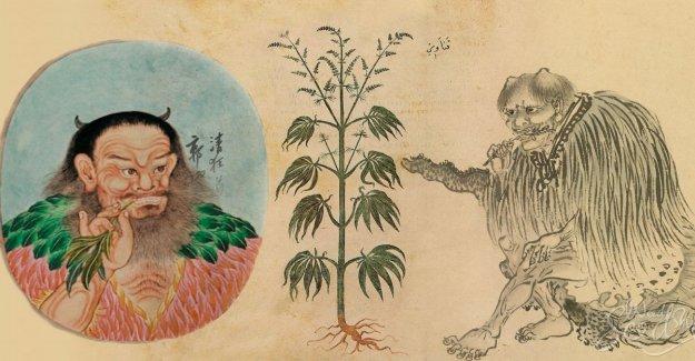 El Cannabis, reveló el misterio: la primera de fumar hace 2.500 años fueron los chinos