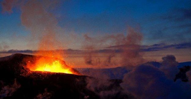 El calentamiento de la Tierra causó una extinción masiva ya 180 millones de años