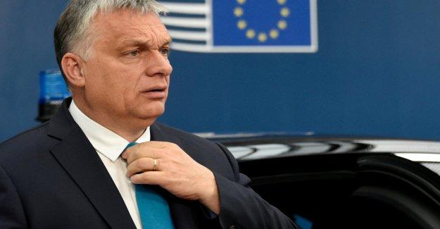 Hungría, Orban es la destrucción de la Academia de las Ciencias