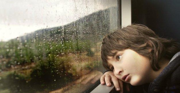 La enfermedad del coche o en el mar? 7 consejos para combatir el malestar en el viaje