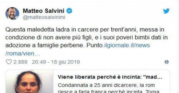 Salvini ataques rom: Ladrón, en la cárcel, en una condición de no hacer más niños. Social: Entre ladrones.... Pd: La Barbarie