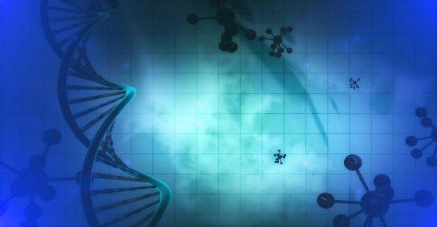 Hacia el primer medicamento contra el cáncer, sin indicación de los órganos