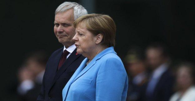 Merkel cultivadas de nuevo desde el temblor