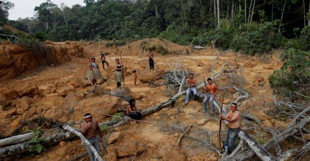 Amazon, Macron: nuestra casa se está quemando. Todos contra Bolsonaro, por Guterres a Madonna y Ronaldo