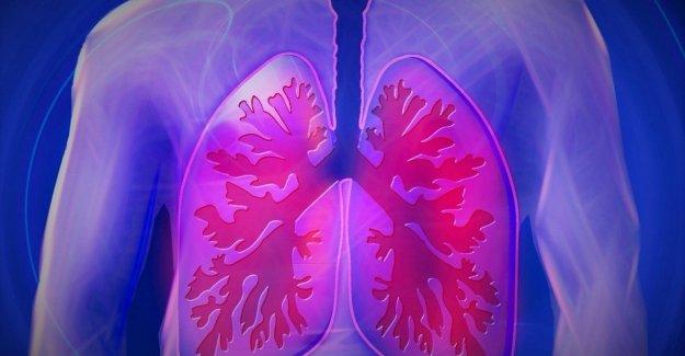 El cáncer de pulmón, descubierto un nuevo mecanismo con el que se propaga
