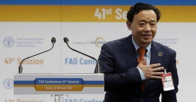 La FAO, el chino Qu Dongyu, asumió el cargo de Director General: vamos a ser el más dinámico, transparente e inclusivo