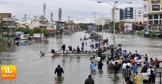 La India del sur-oeste, el dramático, el presupuesto de la monzón: 178 muertes y un millón de desplazados