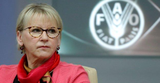 Suecia, dimite el ministro de asuntos Exteriores, Margot Wallström: este Es el momento para quedarse con la familia
