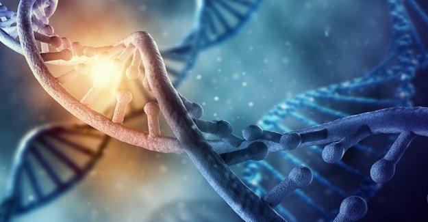 Aiom: las Pruebas de genética de la mutación en el gen Brca es reembolsable a los pacientes y sus familias