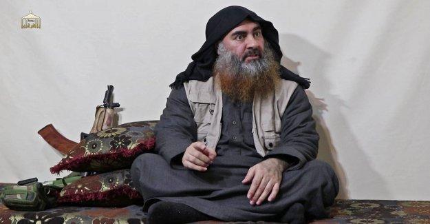 Al Baghdadi, los estudios islámicos en la reivindicación del Califa