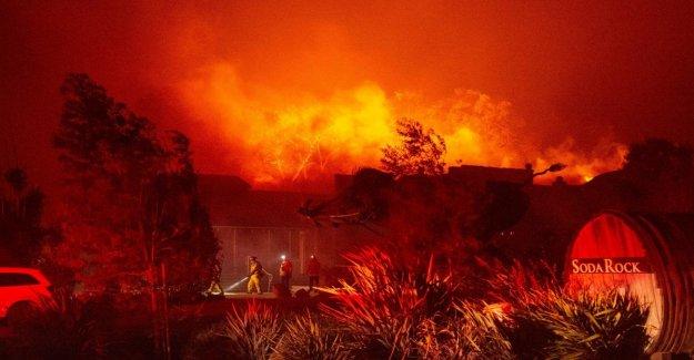 California en la rodilla al fuego: 180 mil evacuaciones