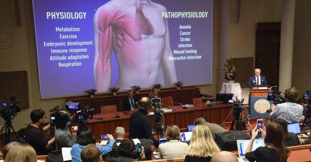 El Nobel de la Semilla, Racliffe y Kaelin y las esperanzas en la lucha contra el cáncer