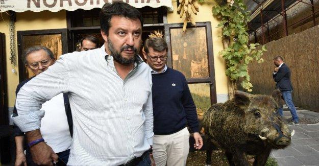 Encuesta Swg, la Liga de baja aún. Retiros De Italia Vivos. El Pd por debajo del 20 por ciento