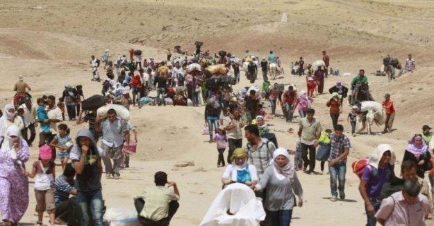 Irak, han llegado a más de 10.000 refugiados sirios en el último éxodo masivo