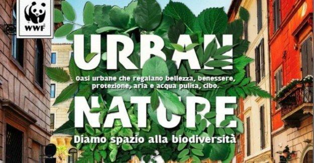 La Naturaleza Urbana de 2019, las propuestas para un buen gobierno en la ciudad
