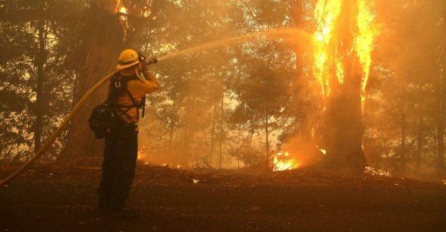 Los incendios en California, evacuados, incluso LeBron, y Schwarzenegger