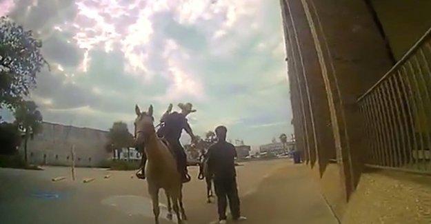 Texas, detenido vinculado a los caballos: la policía de Galveston público el vídeo de la captura de el Far West