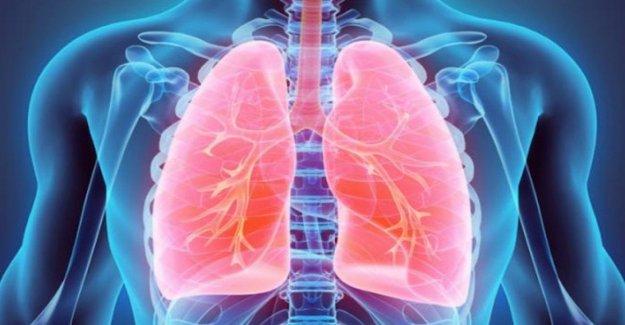 Trasplantado 4 órganos en el paciente con fibrosis quística. Es la primera vez en Europa
