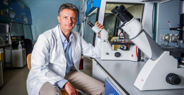 El tumor es resistente al tratamiento, como las bacterias a los antibióticos
