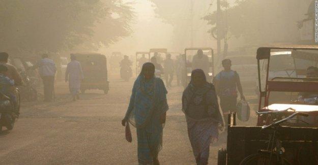 La niebla se ahoga en Nueva Delhi, las autoridades prohíben los vuelos