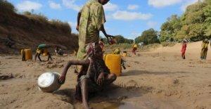 El este de África es una alarma roja por la sequía y la inseguridad alimentaria es generalizada: una familia de cinco en la pobreza