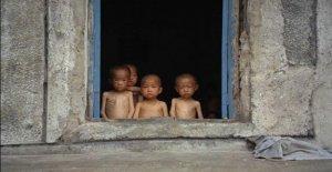 Corea del norte, la escasez de alimentos está en niveles alarmantes: de Seúl ayuda a Pyongyang