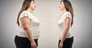 La obesidad, la estimulación cerebral reduce los antojos de alimentos