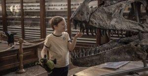 Mi hermano persecuciones de los dinosaurios', la película de los libros más vendidos de Giacomo Mazzariol: Usted se sentirá abrumado por su vitalidad