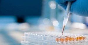 La terapia de Auto-T-arma letal para los linfomas