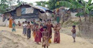 Bangladesh, Rohingya: el recurso de apelación de la 61 ONG que se aplican para la repatriación voluntaria y seguro de los refugiados