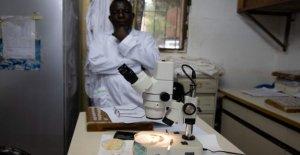 Listo el primer atlas móvil de la malaria