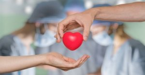 Los trasplantes de-silencio-es-el consentimiento de los cuerpos: va a tomar un año de la aplicación