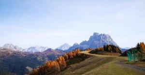 En Italia, el aumento de los bosques,...
