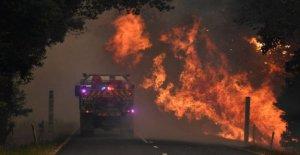 Australia en el fuego: 4 víctimas, 100 mil hogares en situación de riesgo. El comisario: Catástrofe sin precedentes. Ponte en un lugar seguro