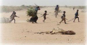 Burkina Faso, aquí es el epicentro de la crisis humanitaria en el desierto del Sahel Central