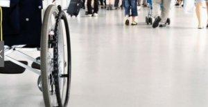 Derecho a la movilidad: Turkish Airlines y ANGLAT juntos para los pasajeros con discapacidad