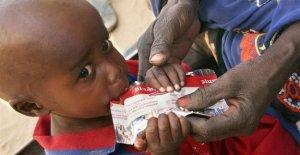 La desnutrición, la campaña de ayuda para los 200 millones de niños en el mundo
