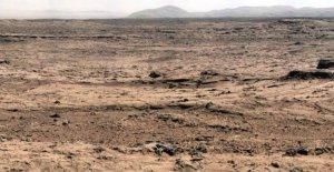 Los insectos en Marte, la teoría de la entomólogo, estados Unidos