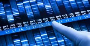 Oncología precisión, a través de la investigación para el estudio de los perfiles genéticos de los tumores