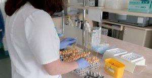 Una terapia de destino contra el cáncer de la vejiga