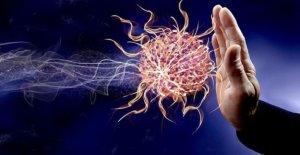 Tumores: la combinación de inmunoterapia mejora la supervivencia y la calidad de vida