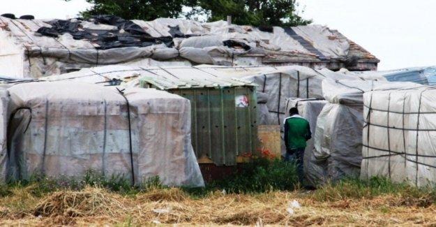 Gioia Tauro, Terraingiusta: el quinto Informe sobre las condiciones de vida y trabajo de los obreros en el extranjero