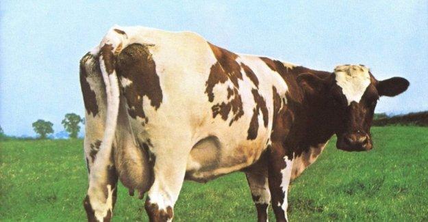 Aubrey Po Powell, el artista detrás de la imagen de la portada de Pink Floyd: siempre Hemos dado el papel blanco