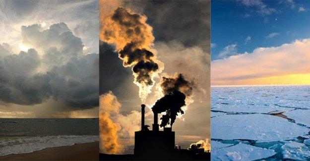Los científicos del clima ' de apelación en contra de la búfalos: todos Somos responsables del calentamiento global